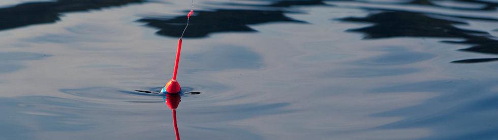 Bild von Angeln am See
