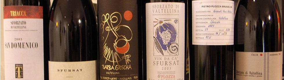 Bild von Italienischer guter Rotwein vom Lago di Como