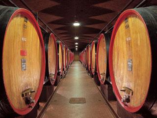 Bild von Holzfässer in Weinkeller für Valtellina Superiore