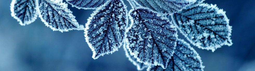 Bild von Wettervorhersage und Klima Comer See Winter
